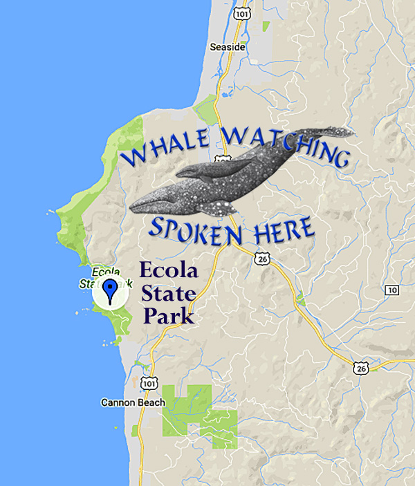Ecola State Park - on Map whales > Tolovana Inn on