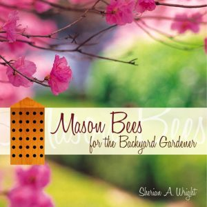 Mason bees for the backyard gardener